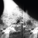 Review: Godspeed You! Black Emperor – Asunder, Sweet, and Other Distress